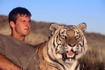 Living With Tigers : Programs : Animal Planet : Discovery ... Zoologist With Tiger