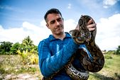 Photo for Man-Eating Python