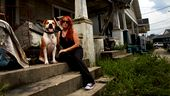 Photo for Pitbulls and Parolees 8