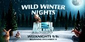 Photo for WILD WINTER NIGHTS