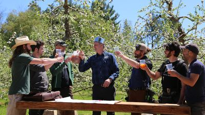 Image from Treehouse Masters